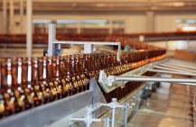 Craft Brewery Insurance